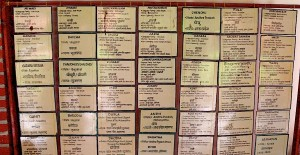 adivasi academy - wall of languages