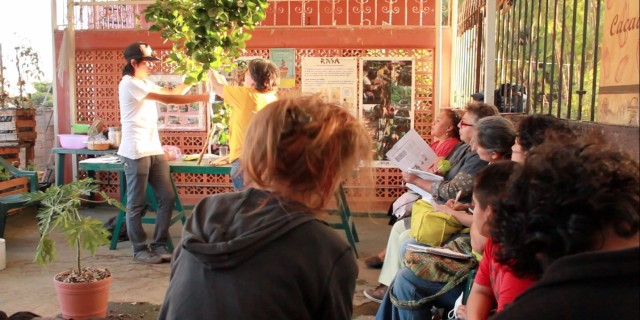 Learning Autonomy, Oaxaca