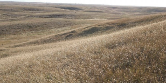 Learning by running… across the prairie with students and teachers…
