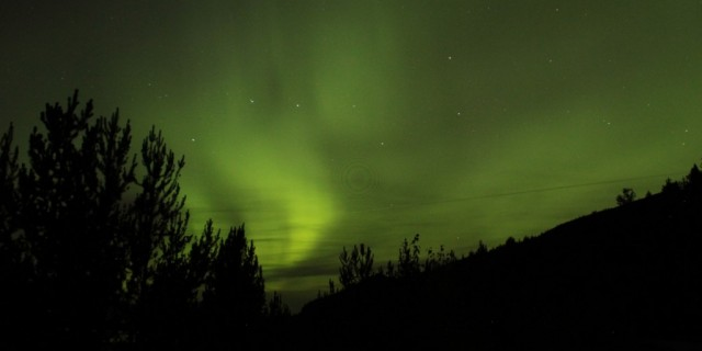 Dancing in the Northern Lights